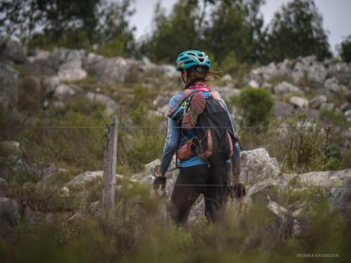Mountain Bike Sección 2